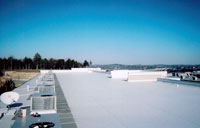 Thermo-Plastic Single Ply Roof System